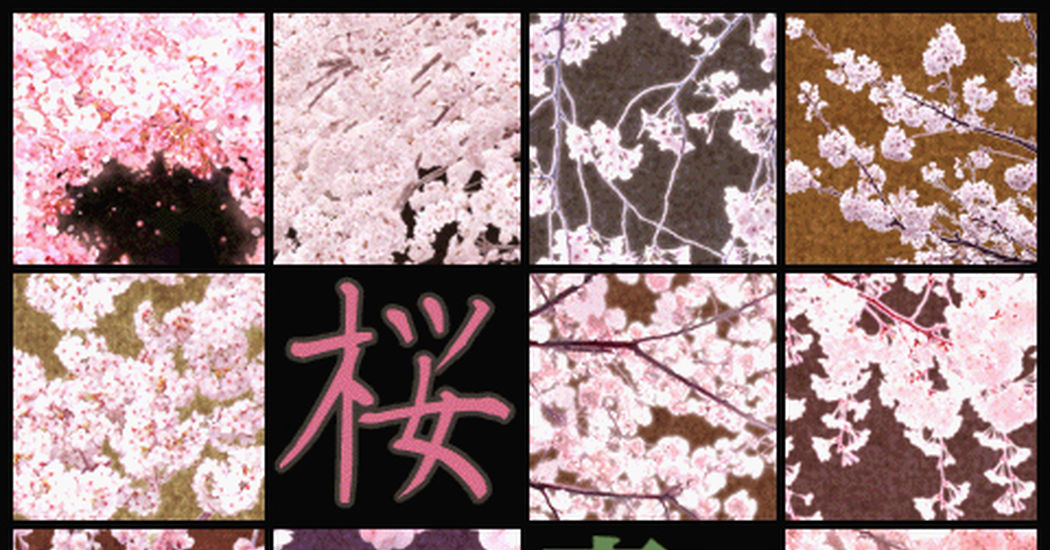 Cherry Blossom patterns and textures!