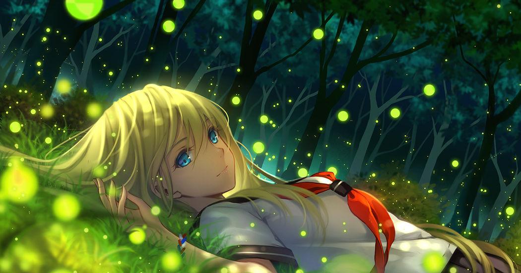 Fireflies, The Summer Night Dreamy Lights