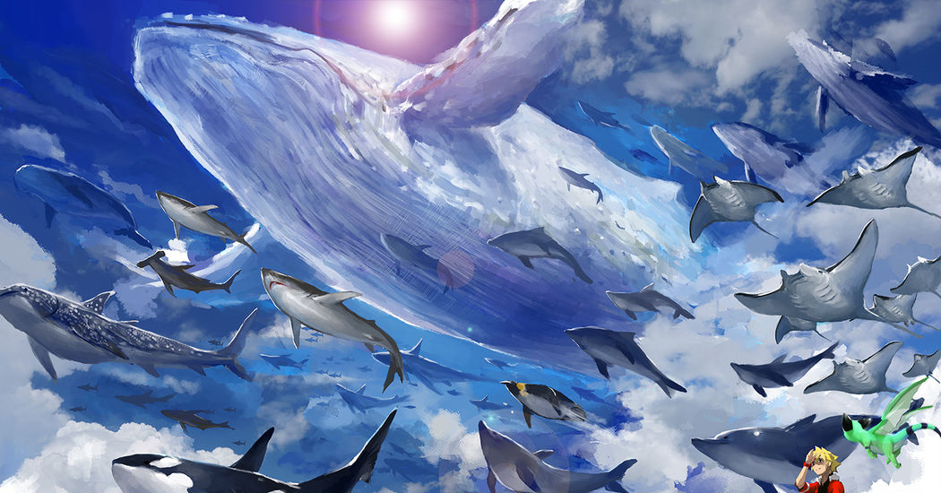 """Feature on """"Fish in the Sky"""" Illustrations"""