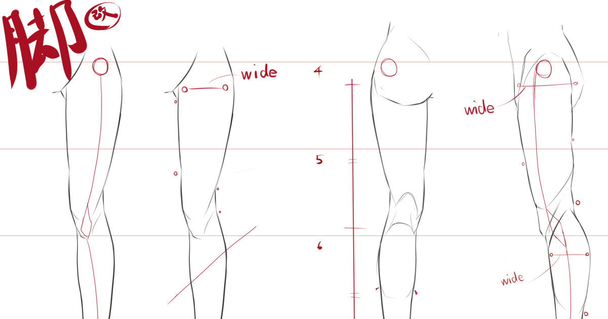 How to Draw Legs – Skillfully Draw Hip Joints, Knees and Leg Muscles