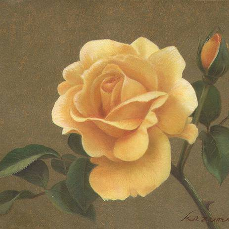 黄色のバラ きいろのばら とは ピクシブ百科事典