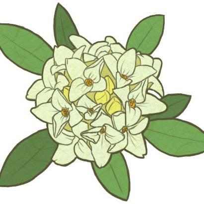沈丁花 じんちょうげとはピクシブ百科事典
