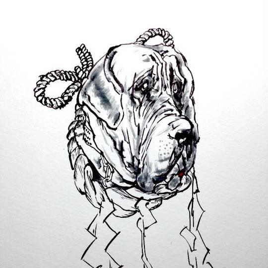 土佐犬 とさいぬとはピクシブ百科事典