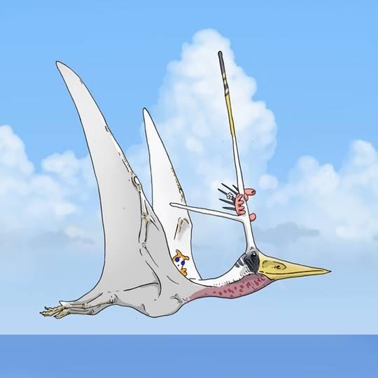 ニクトサウルス (にくとさうるす)とは【ピクシブ百科事典】