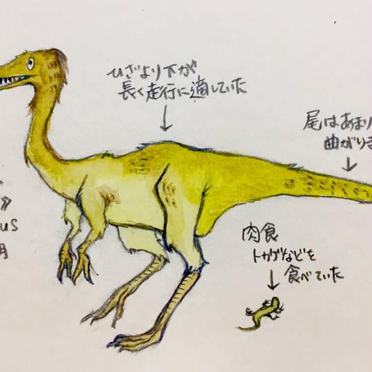 ロシラサウルス