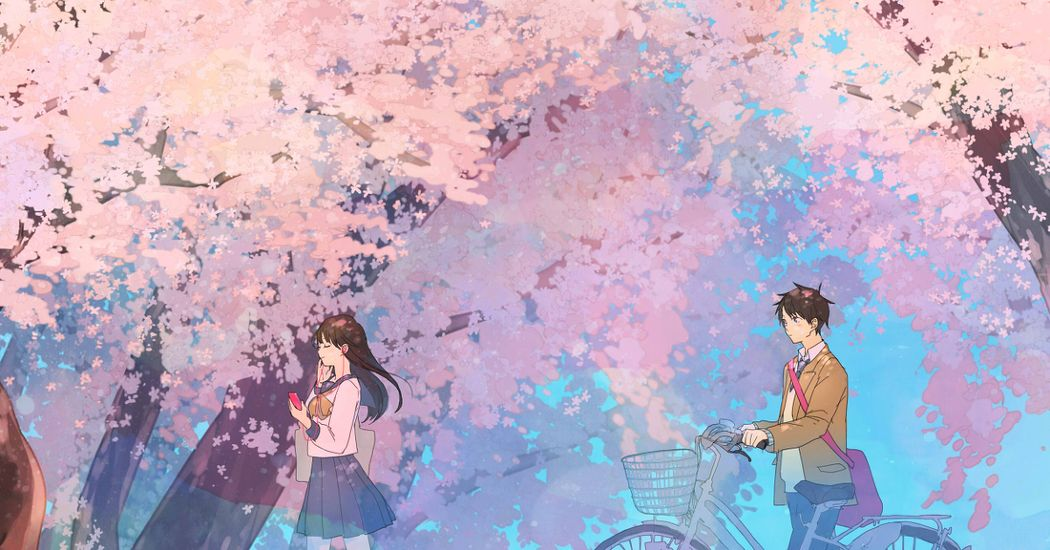The flowers of encounters and farewells. Illustrations of Cherry Blossoms