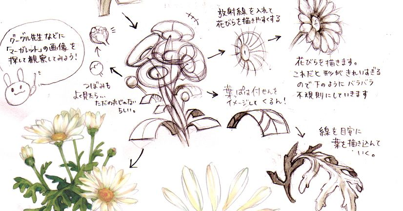 How to Draw Flowers (Big Flowers/Flower Crowns)