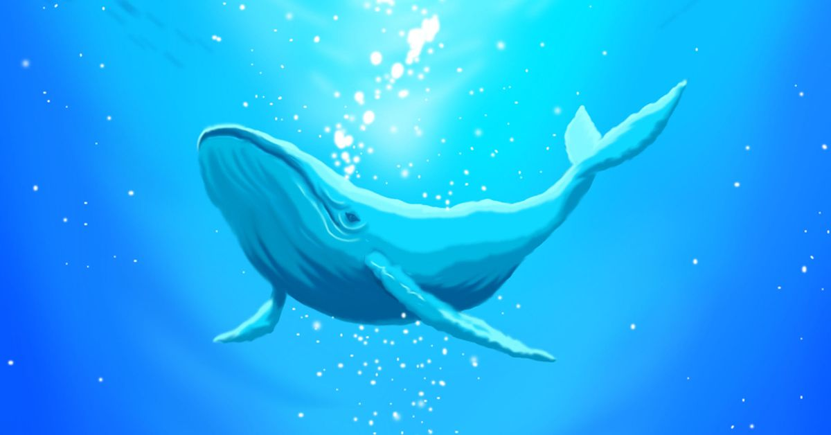 Drawings of Whales Swimming - The ocean's big mystery.